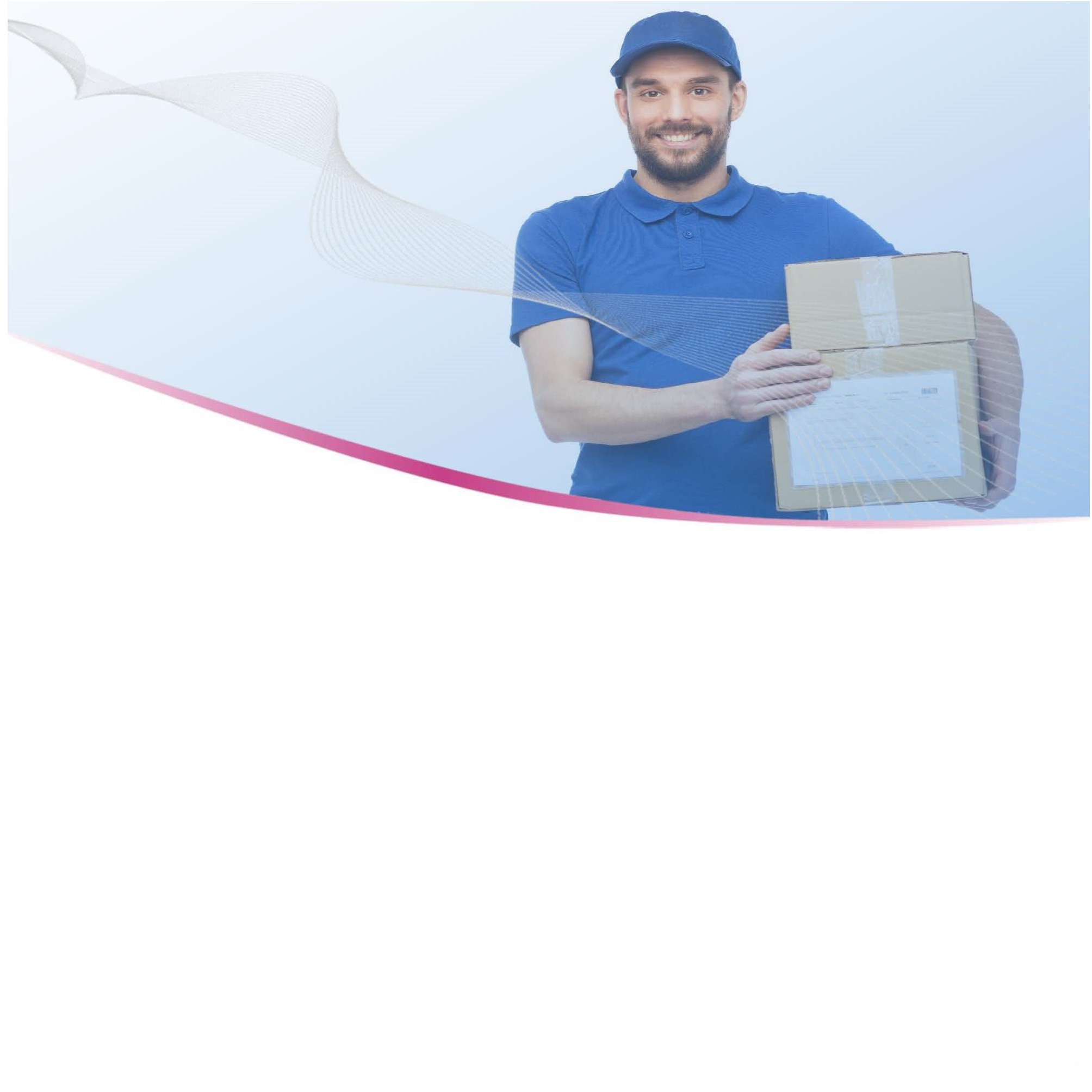 Logo for E-commerce Parcel Delivery: Problems and Possible Solutions